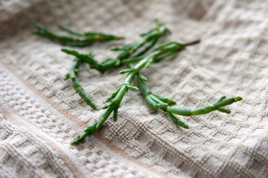 sea asparagus